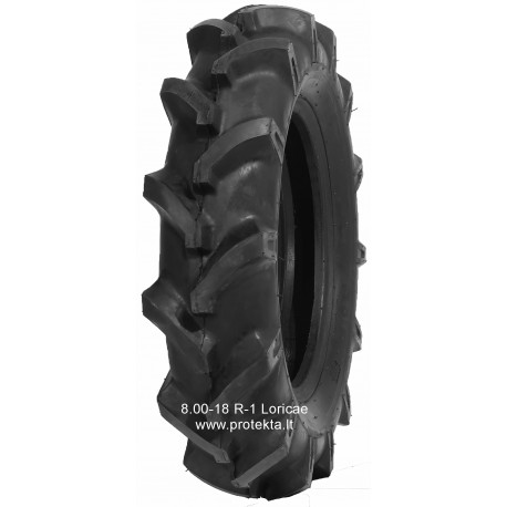 Tyre 8.00-18 R-1 Loricae 8PR 106A5 TT